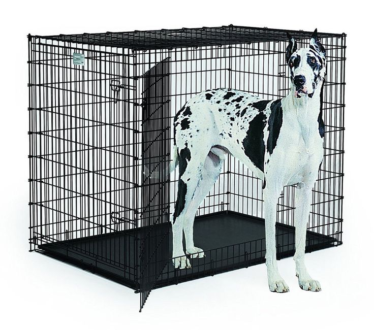 """Solution Series """"Ginormus"""" XXL Double Door Dog Crate Kennel Bed Pet House Dane #MidWestHomesforPets"""