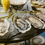 Best Oyster Bars In Chicago - Cheap Oysters Happy Hour