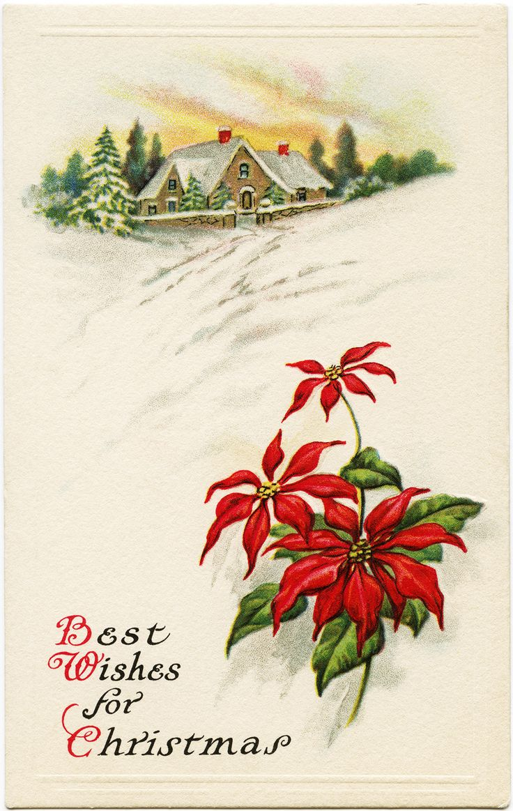 349 best vintage christmas cards bells birds poinsettias and