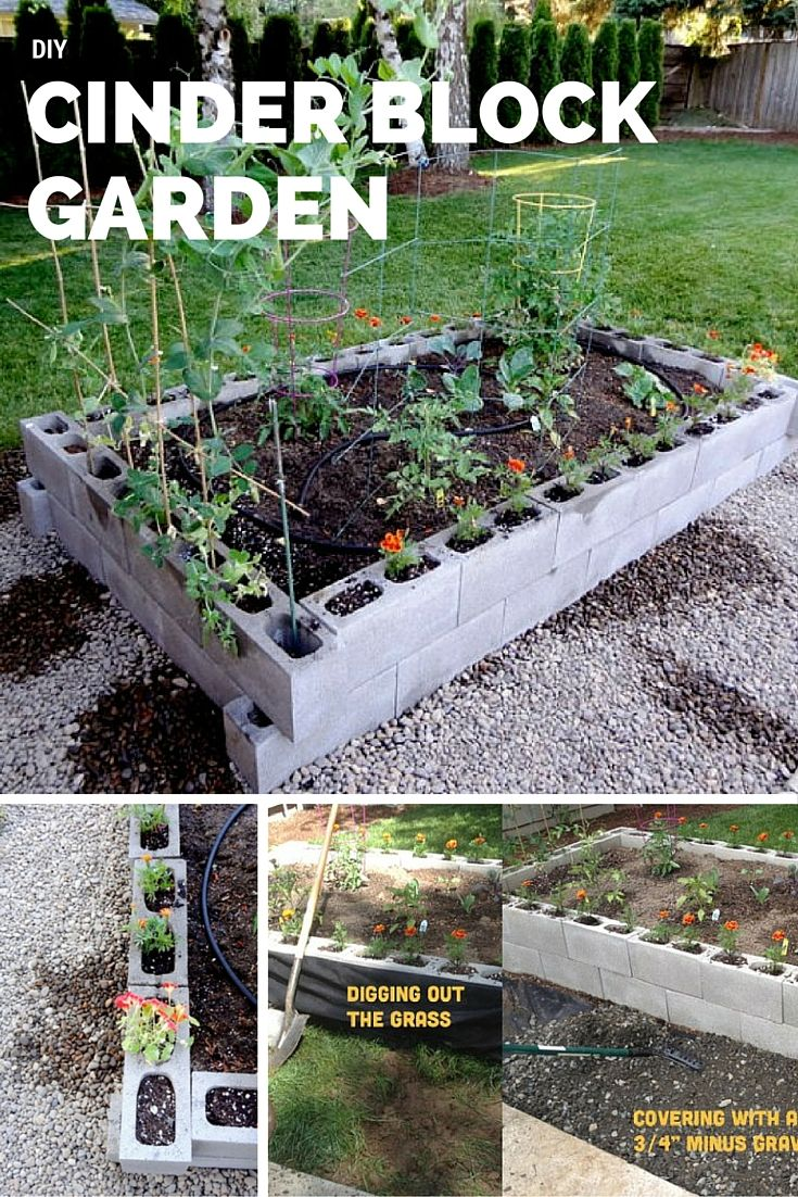 Best 20+ Raised garden beds cinder blocks ideas on Pinterest | Bed ...