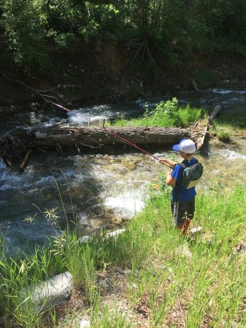 Rio hondo taos nm family fly fishing pinterest for Rio fly fishing