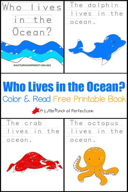 Who Lives in the Ocean? Color and Read Printable Book for Early Readers