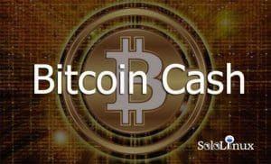 Que es el Bitcoin Cash