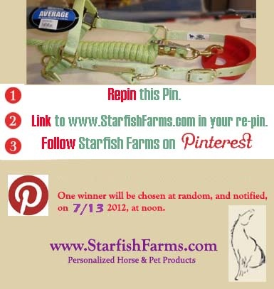 Pin this Pastel Green Premium Nylon Horse Halter with Custom Engraved Nameplate with matching Snap Lead to WIN IT!! See rules above. Winner to be selected in random drawing on 7/13/12 at noon.