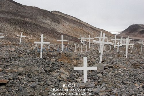 Image of grave markers and flowers in the cemetery at scoresbysund, an inuit village in east greenland by ArcticPhoto