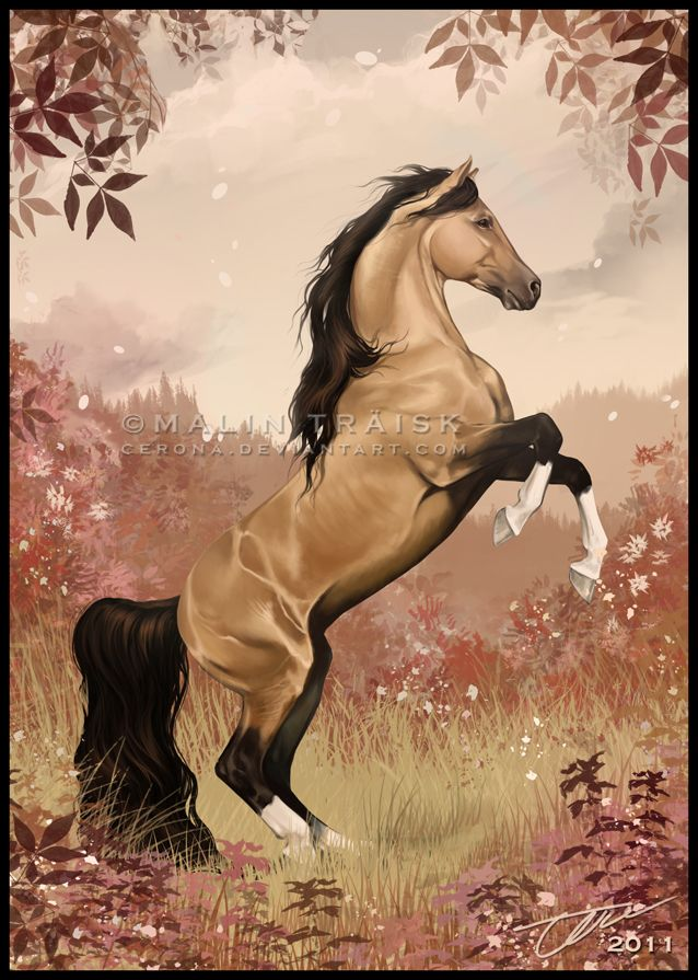 Beatiful Houses Cool 1178 Best ♥♥ Beautiful Horses And Horse Art ♥♥ Images On Decorating Design