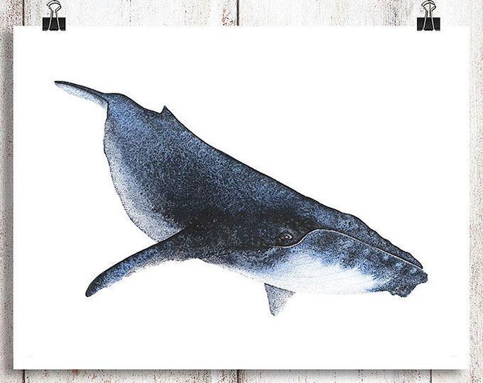 Bebé ballena jorobada acuarela A3 de impresión, arte de la ballena, ballena impresión, acuarela de ballena jorobada, ballena de acuarela, pintura, casa de playa de la ballena