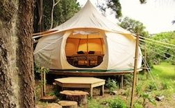 Fossil Bay Lodge - Backpackers Glamping and Cottages Waiheke Island in New Zealand