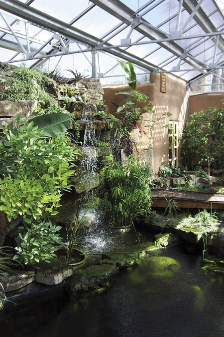 35 best indoor pond images on pinterest garden layouts for Koi pond greenhouse