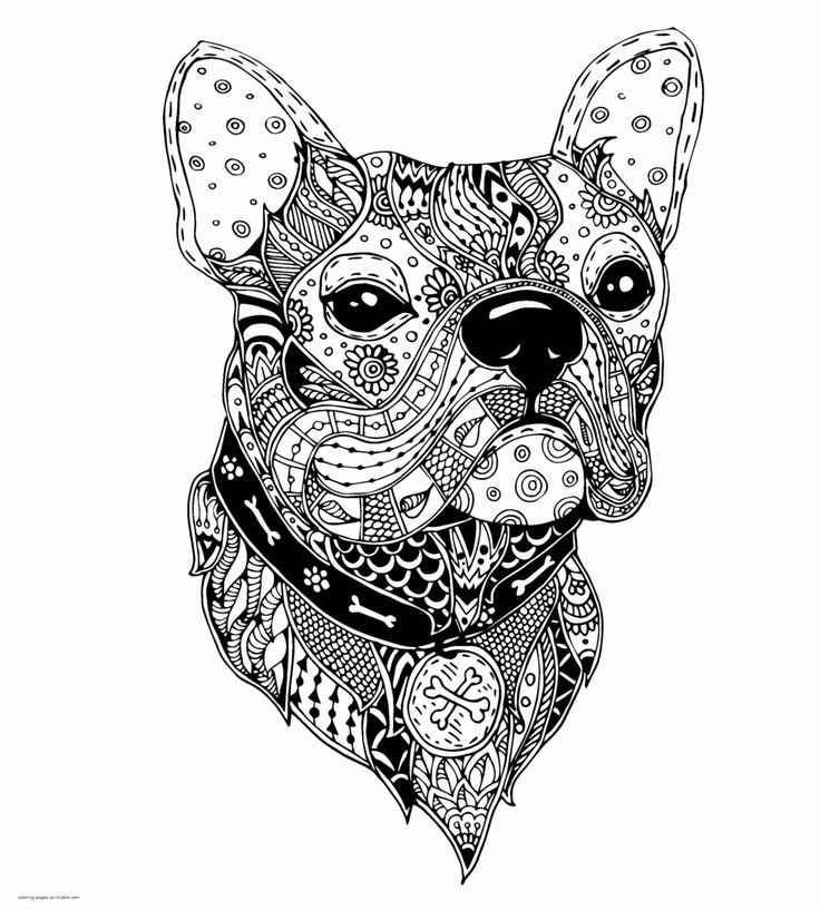 Coloring Pages Animals Hard | Coloring Pages Gallery ...