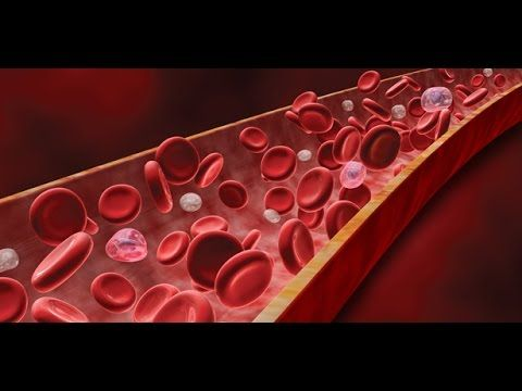 Anatomy and Physiology of Blood - YouTube