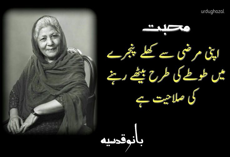 17 best images about bano qudsia on pinterest for Bano qudsia poetry