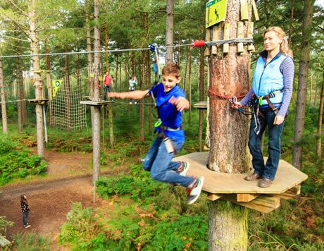 GoApe! Having fun in the treetops.