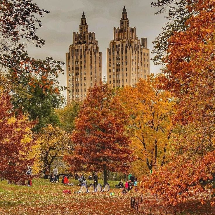 Autumn leaves in Central Park by @milan2ny23  New York City Feelings  The Best Photos and Videos of New York City including the Statue of Liberty, Brooklyn Bridge, Central Park, Empire State Building, Chrysler Building and other popular New York places and attractions