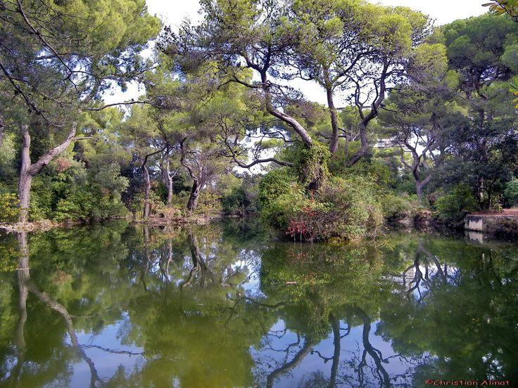 Dans le parc de la campagne Pastré à Marseille coté sud
