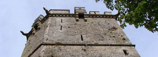 Chateau de Montbard, XIIIe, XIVe siecle - Adresses, horaires, tarifs. 21