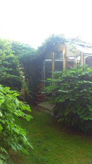 En lugn plats i trädgården. Humlet letar sig upp på taket till växthuset/fågelhuset.