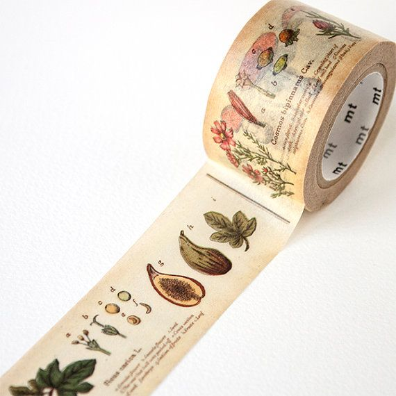 MT ex Wide Washi Tape  Plant by foxandstar on Etsy, £5.25