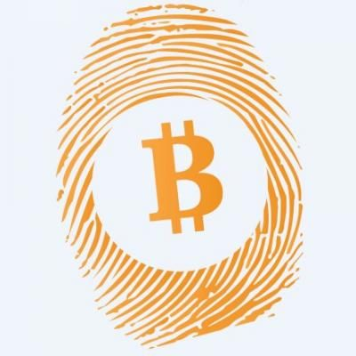 Bitcoin—ban, regulate or ignore? » Brave New Coin