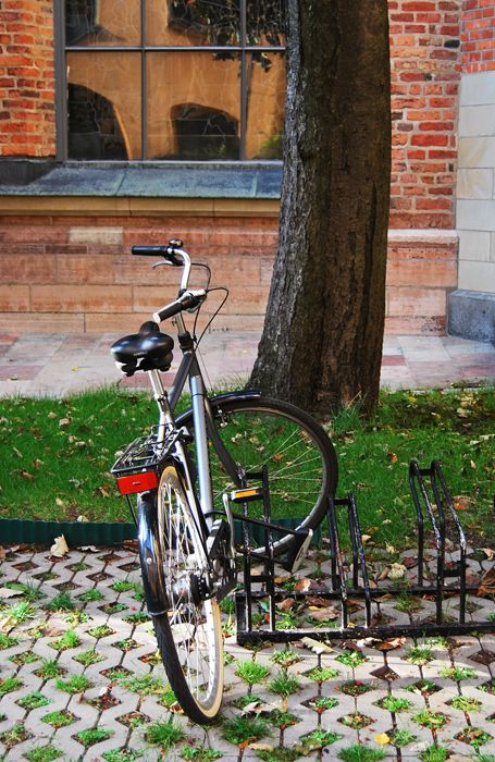 Bike in Stockholm - another hello to the autumn.
