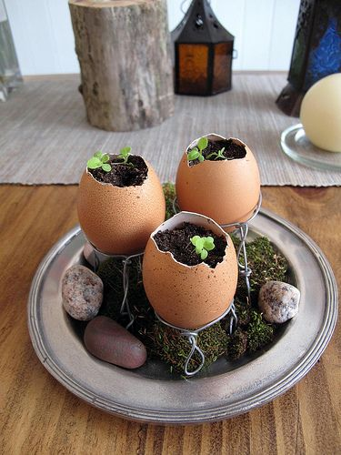 Egg Seed Planter by Phizzychick