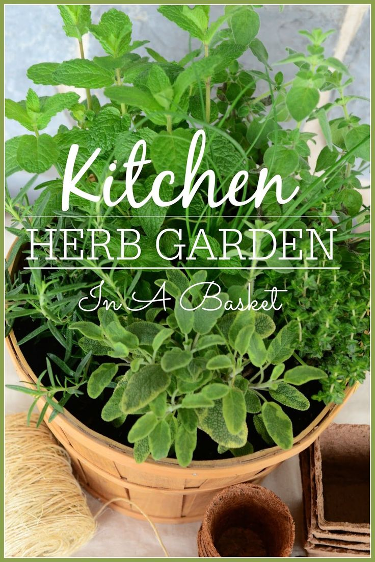 Easy way to plant a kitchen herb garden in a basket. stonegableblog.com