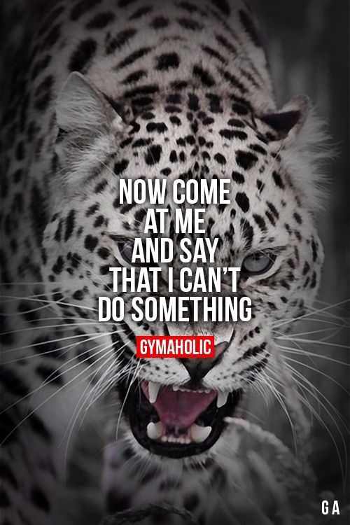 Amazing quote to live by #neverstoptrying