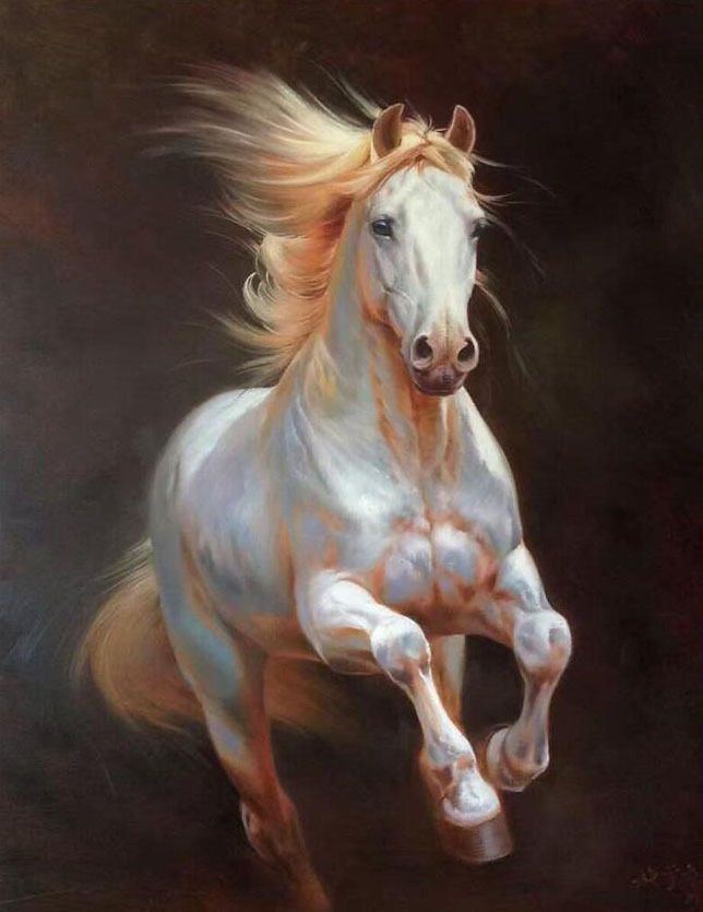 Chop321 100 Hand Painted Abstract Animal White Horse Art Oil