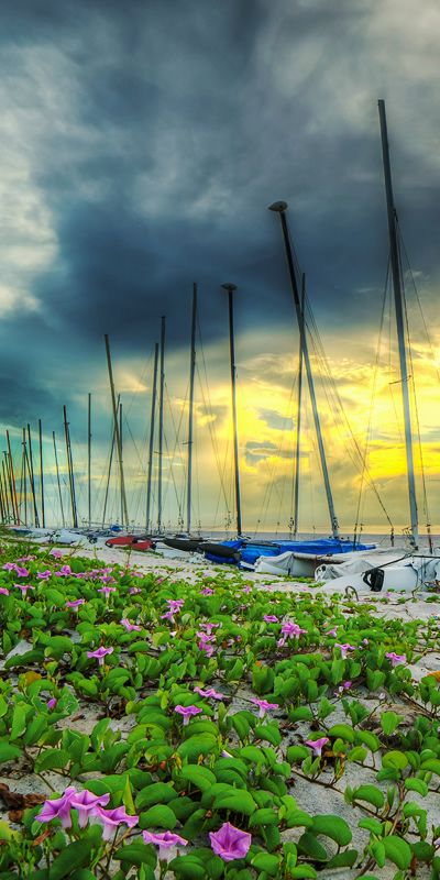 Boats enjoying a scenic rest on Delray Beach in Palm Beach County. South Florida is home to many fantastic cities and Delray Beach is one! Enjoy the view!