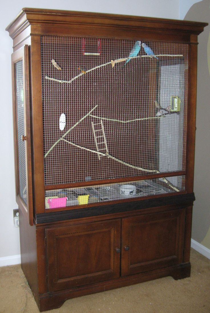 Bird aviary created from our old tv armoire. Love it -- and the birds love it…