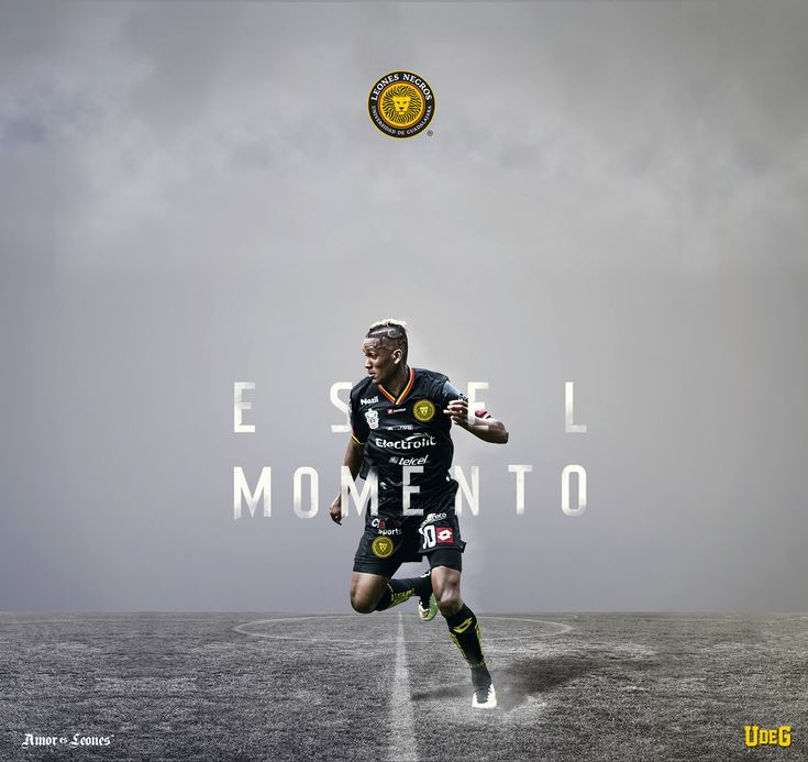 Artes para la campaña de media temporada clausura 2015 del equipo de la liga mexicana de futbol Leones Negros Universidad de Guadalajara.