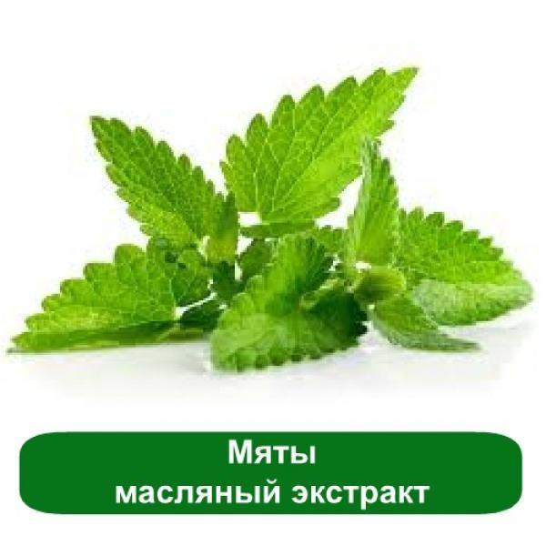 Мяты масляный экстракт, 1 литр