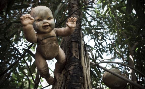 Mexico > Xochimilco > La Isla de las Munecas  La Isla de las Munecas    An island filled with hundreds of hanging, decomposing, decapitated dolls
