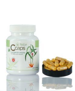 CCAPS - CANAPA E CURCUMA E' un prodotto vegano. Si tratta di capsule compatte composte da estratto di pepe nero, curcuma e cannabis in polvere (Fedora14 CBD + CBDA). Contengono anche tanta vitamina C estratta dalla ciliegia acerola