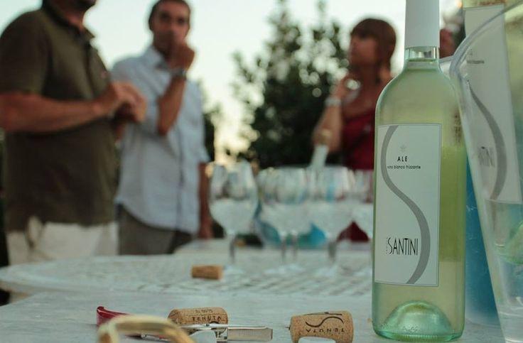 Dove comprare il vino a Rimini - Tenuta Santini