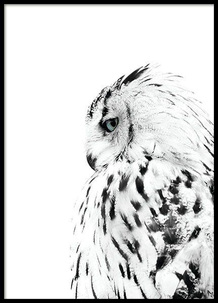 Hübsches Poster mit Fotografie eines Eisbergs. Macht in einem schwarzen Bilderrahmen und zusammen mit anderen Postern mit Naturmotiven und Fotografien von Natur, Bergen oder Wäldern aus der gleichen Serie eine gute Figur. www.desenio.de