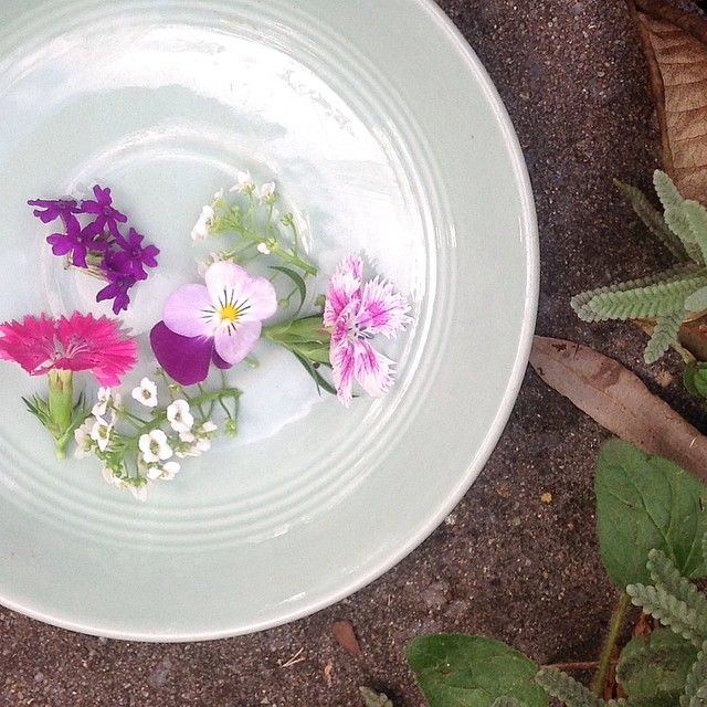 Little flowers from my garden to decorate this afternoon's cake - because it's May, and they're dying to be admired:)   #organic #homegrown #pretty