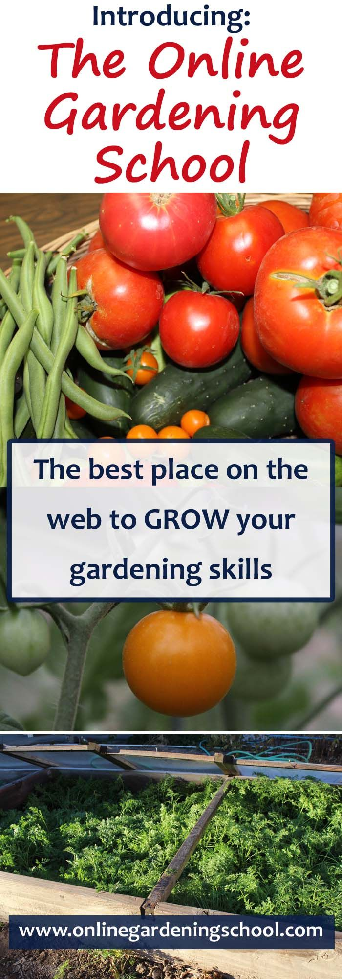 I am excited to announce the launch of The Online Gardening School.  Click this pin for Grand Opening special prices on all my gardening Video courses!