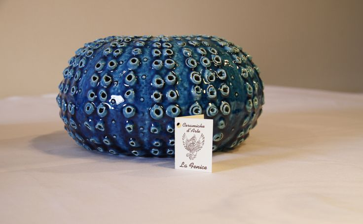 Sea urchin-Large size