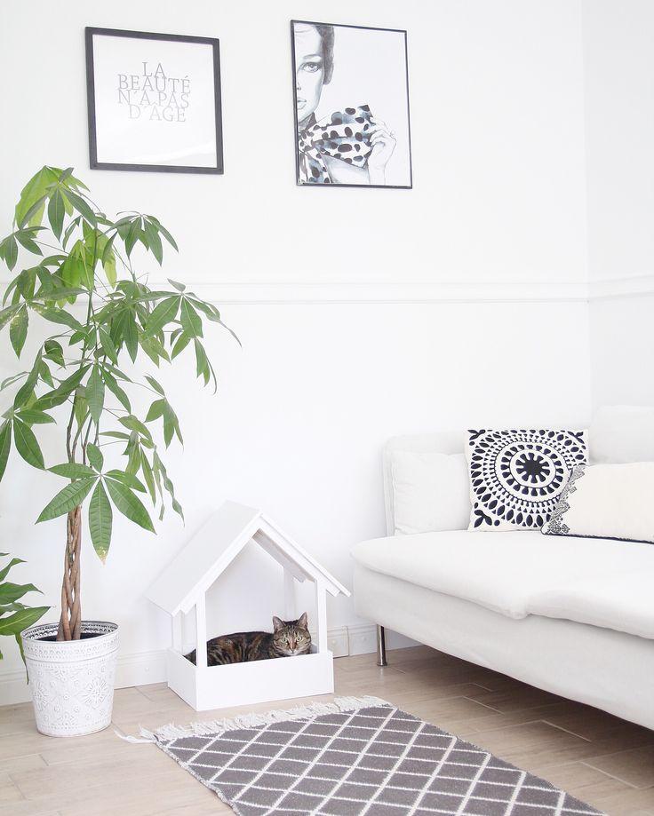 best 20 selber bauen kratzbaum ideas on pinterest. Black Bedroom Furniture Sets. Home Design Ideas