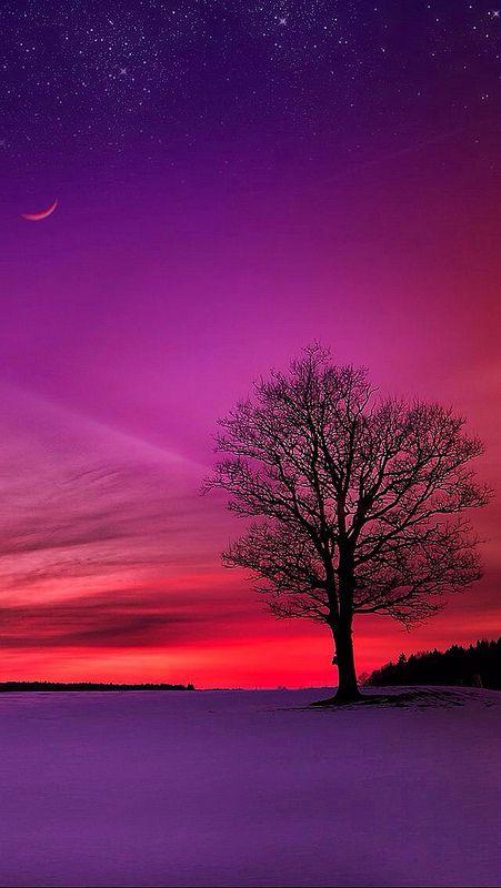 What a beautiful Sunset !!