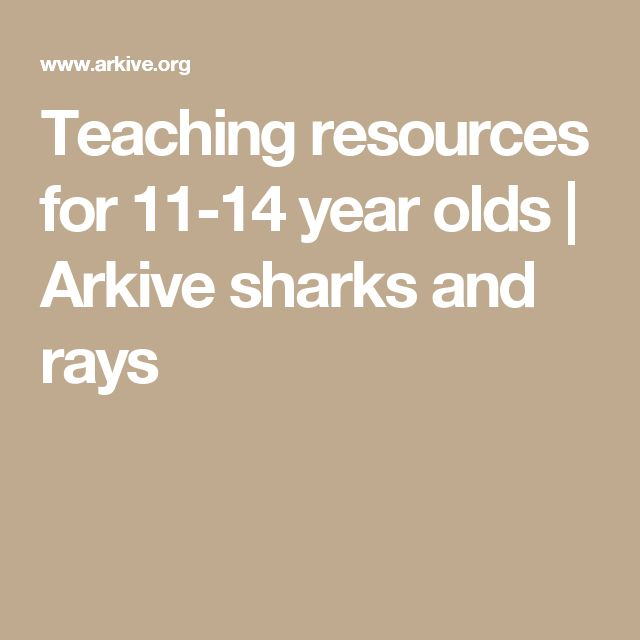 Teaching resources for 11-14 year olds | Arkive  sharks and rays