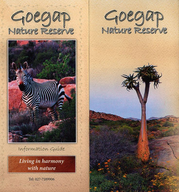 https://flic.kr/p/H6Hbcs | Goegap Nature Reserve Information Guide; 2013, Northern Cape, South Africa