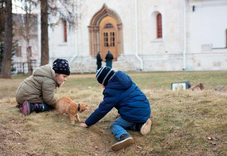 Саввино Сторожевский монастырь. Дети играют с монастырским котенком
