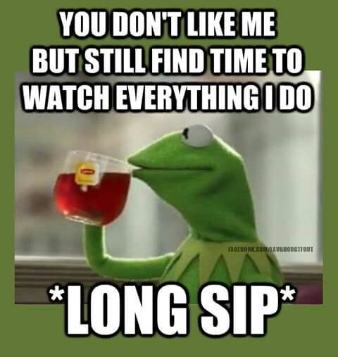 Kermit meme. Funny quote. Stalkers