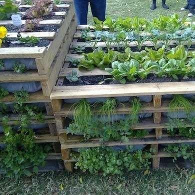 Shipping Pallet Raised Garden Bed
