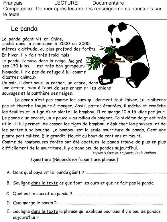 Le panda : exercice de lecture