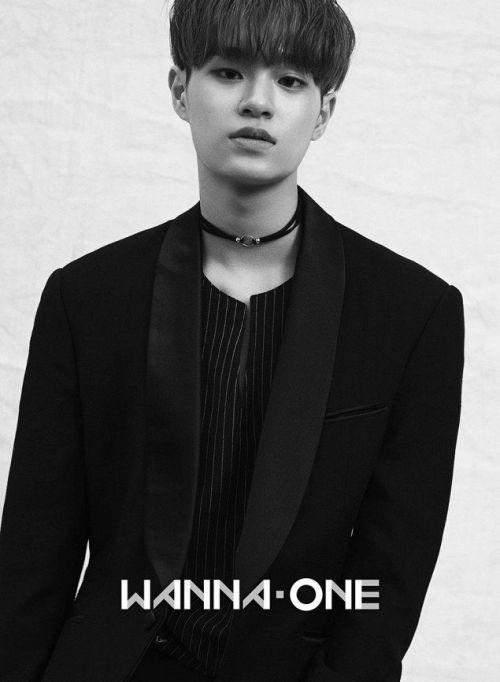 Trước thềm concert khủng, Wanna One tung bộ hình khiến fan 'ngất lịm'