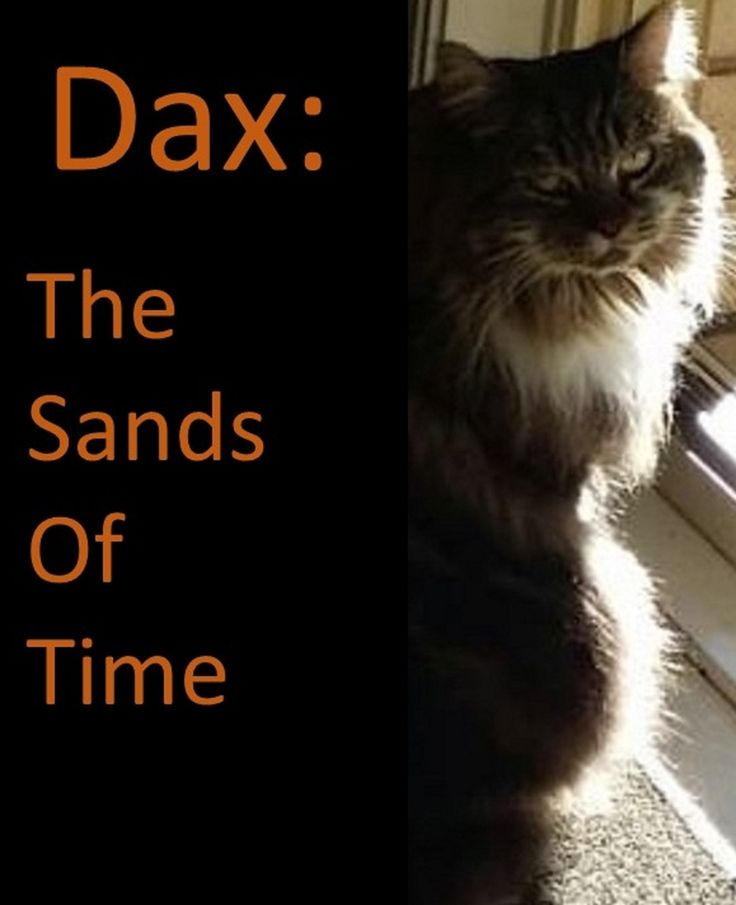 "A picture book of Dax The Maine Coon Cat.  A Companion book for the ""Atheisaurus"" Series of books"