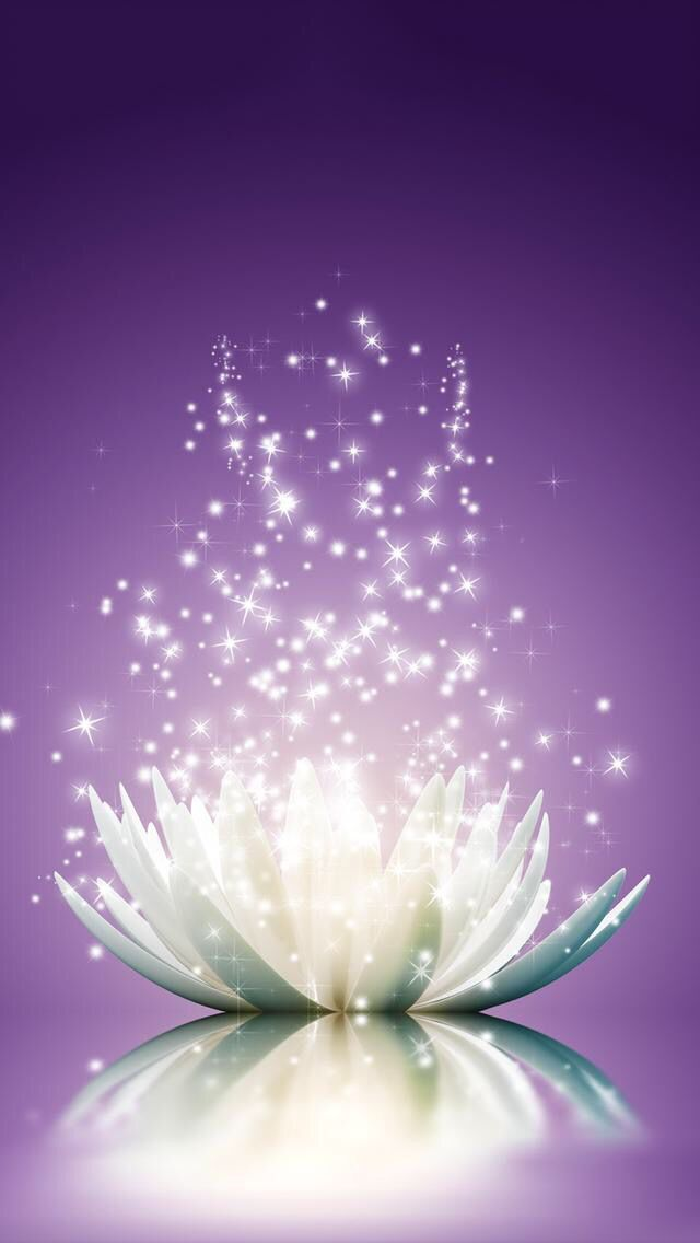 Wallpaper Iphone Yoga  Best 50+ Free Background